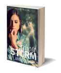 HB_GhostStorm_3dcover